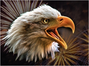 Screaming Eagle with Fireworks!