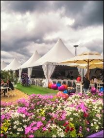 Vinexpo Tents